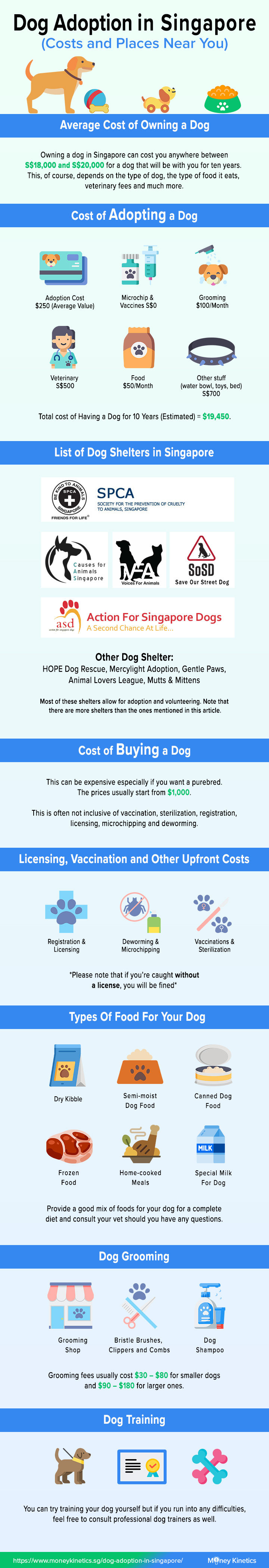 Dog Adoption in Singapore Costs and Places Near You Money Kinetics